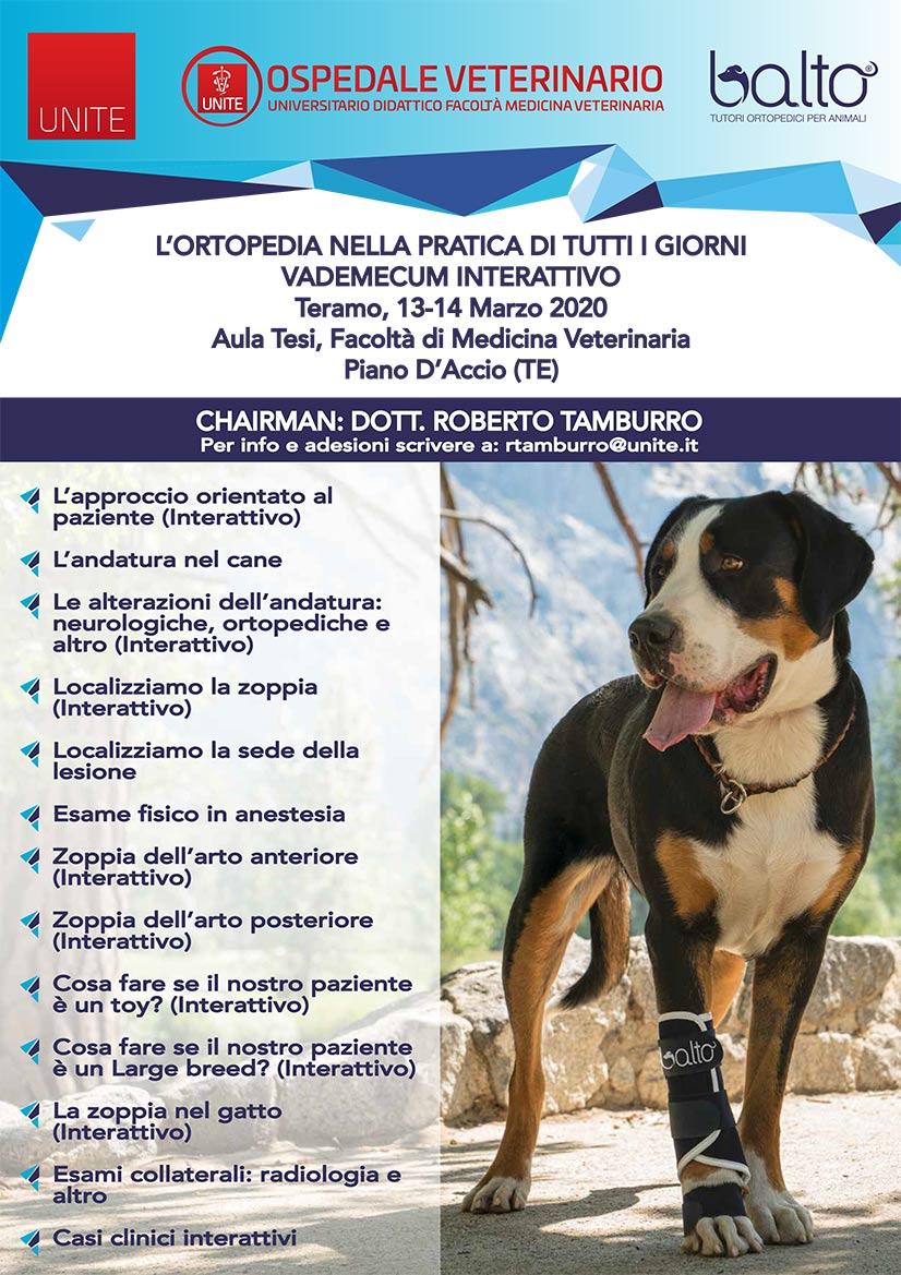 Manifesto-Teramo_